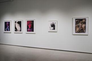 FEMININE CONFIDENTIAL, installation view