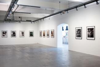 JULIAN SCHNABEL Polaroids, installation view