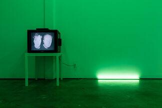 Richard Hoeck & Heimo Zobernig: 1997/2013, installation view