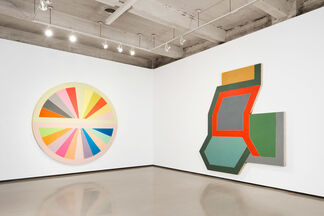 Frank Stella: Shape as Form, installation view