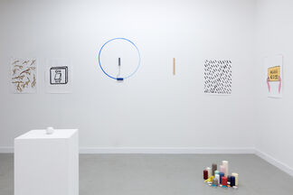 You Say You Know You Will You Do, installation view
