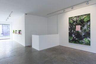 Radames 'Juni' Figueroa, installation view