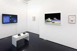 Takeshi Murata   Second Nature, installation view