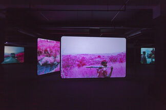 Richard Mosse - The Enclave, installation view