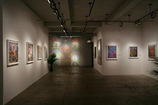 Shamanic Illuminations: The Art of Pablo Amaringo, Alex Grey and Mieshiel, installation view