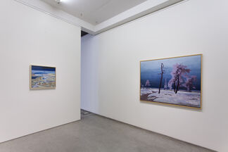 Another Portrait of an Artist, installation view