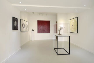 Nature's Alchemy   Gallery Launch, installation view