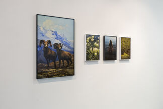 Anke Loots: Everything In Its Right Place, installation view