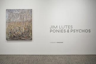 Jim Lutes: Ponies & Psychos, installation view