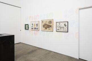 Jeffery Vallance: Other Animals, installation view