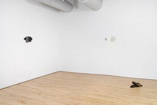 Bill Walton, installation view