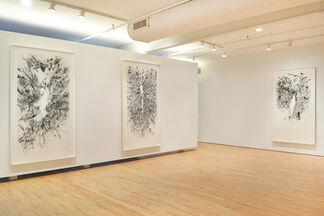 Julie Mehretu: Myriads, Only By Dark, installation view