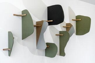 CARI GONZALEZ-CASANOVA / Mimétisme et psychasthénie légendaire, installation view