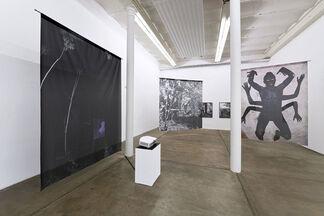 Nadin Maria Rüfenacht - Feu pâle, installation view