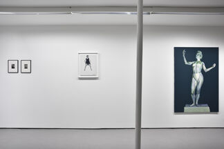 Dead Ringers, installation view