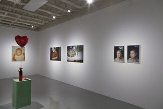 """Emily Peacock """"Soft Diet"""", installation view"""