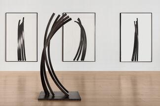 Bernar Venet: Arcs, installation view