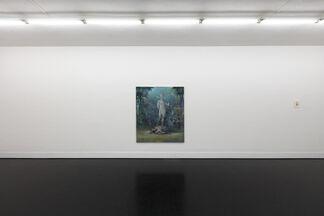 Hemlock, installation view