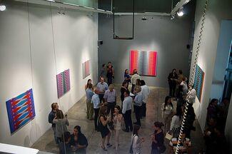 Pablo Griss: Intervention, installation view
