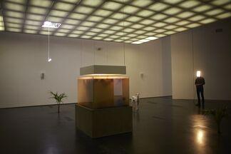 Pierre Huyghe, installation view