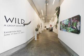 WILD, installation view