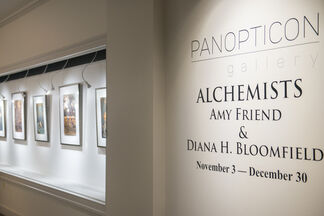 Alchemists: Amy Friend and Diana H. Bloomfield, installation view