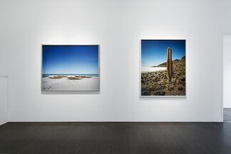 Scarlett Hooft Graafland - Discovery, installation view