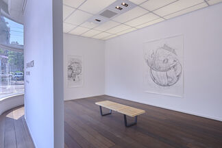 Ichwan Noor - Beetle Sphere, installation view