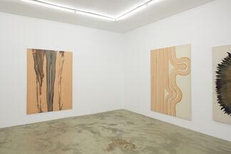 Fiona Mackay – Close to, installation view