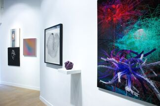 Collectors Cabinet, installation view