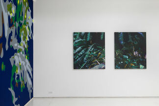 Paradise Constructed, installation view
