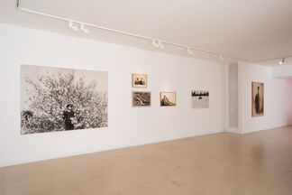 Dor Guez: The Sick Man of Europe, installation view