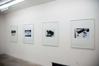 Volatile Smile: The Poodle's Core, installation view
