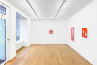 André Butzer, installation view