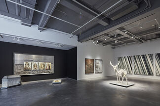 Voice of Asia, installation view