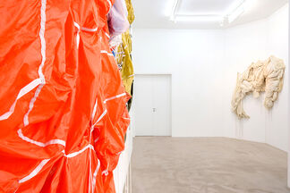 """David Miguel """"Flying Visions"""", installation view"""