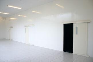 Gregor Schneider, installation view
