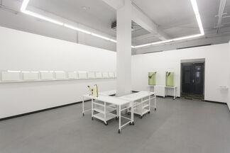 IRENE KOPELMAN - Underwater Workstations, installation view