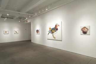 Two Views of Pop: Don Nice and Dorothy Grebenak, installation view