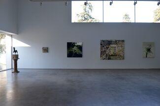Nest, Allison Schulnik, installation view