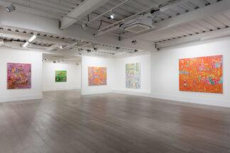 Reza Derakshani: Hunting the Light, installation view