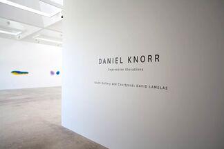 Daniel Knorr, Depression Elevations, installation view