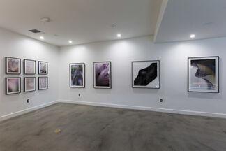 Mark Hanauer: Human Nature, installation view