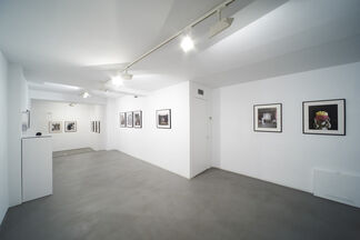 Down in the rabbit hole, installation view
