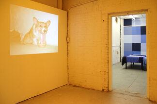 BLUE - Puppies Puppies, installation view