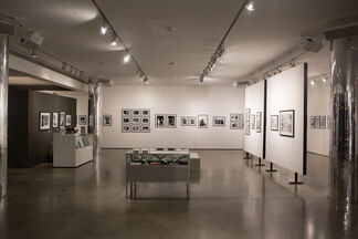The Silver Age, installation view