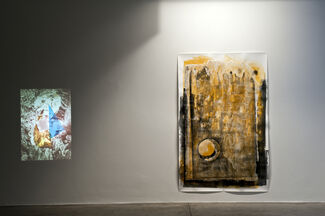 Petrified Paper, installation view