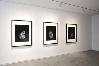 Hiroshi Sugimoto, installation view