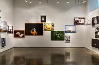 Jesse Burke | Wild & Precious, installation view