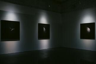 Danila Tkachenko. Lost Horizon, installation view